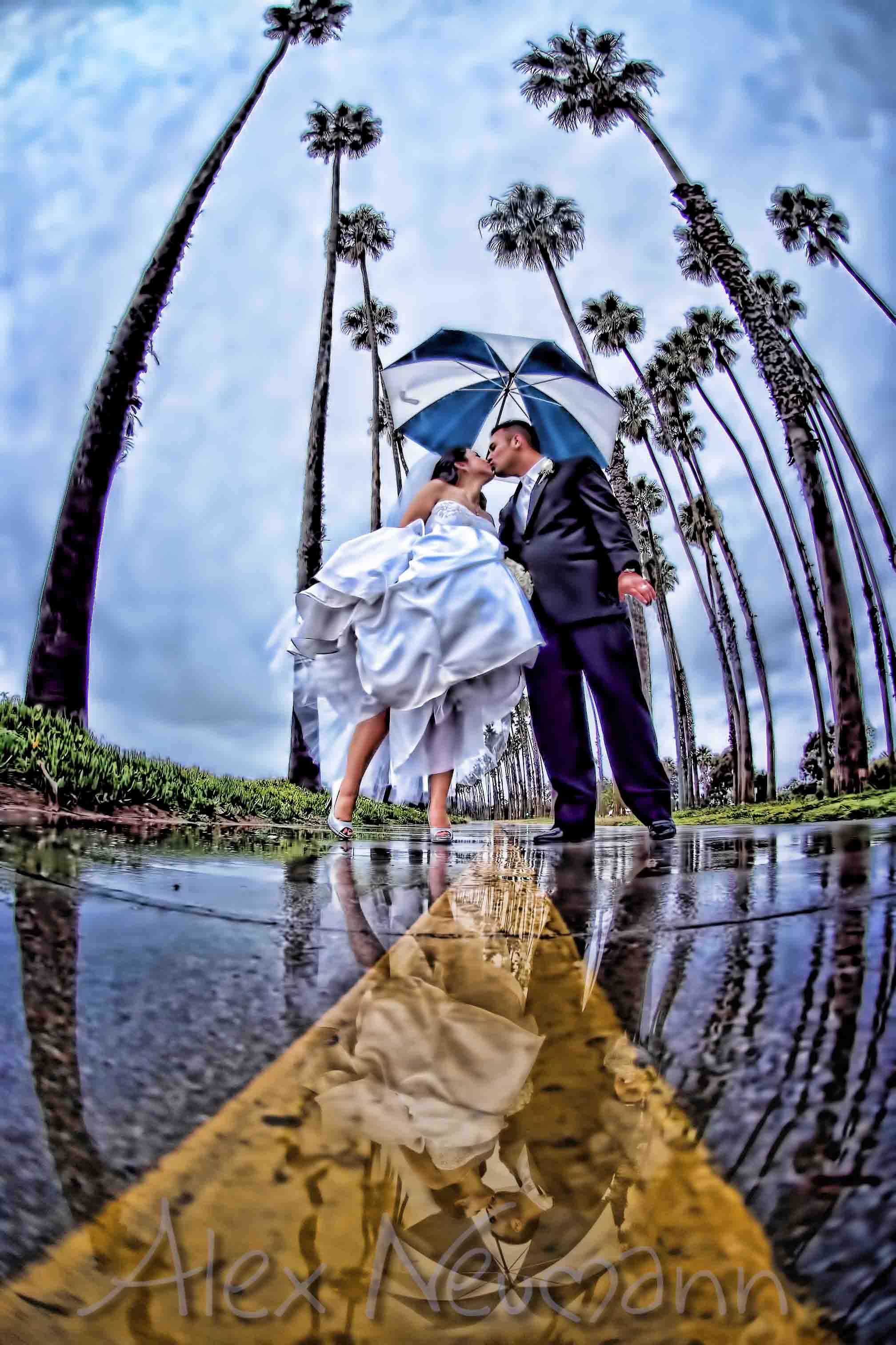 Cippa. org : Welcome to the Channel Islands Alex neumann wedding photography